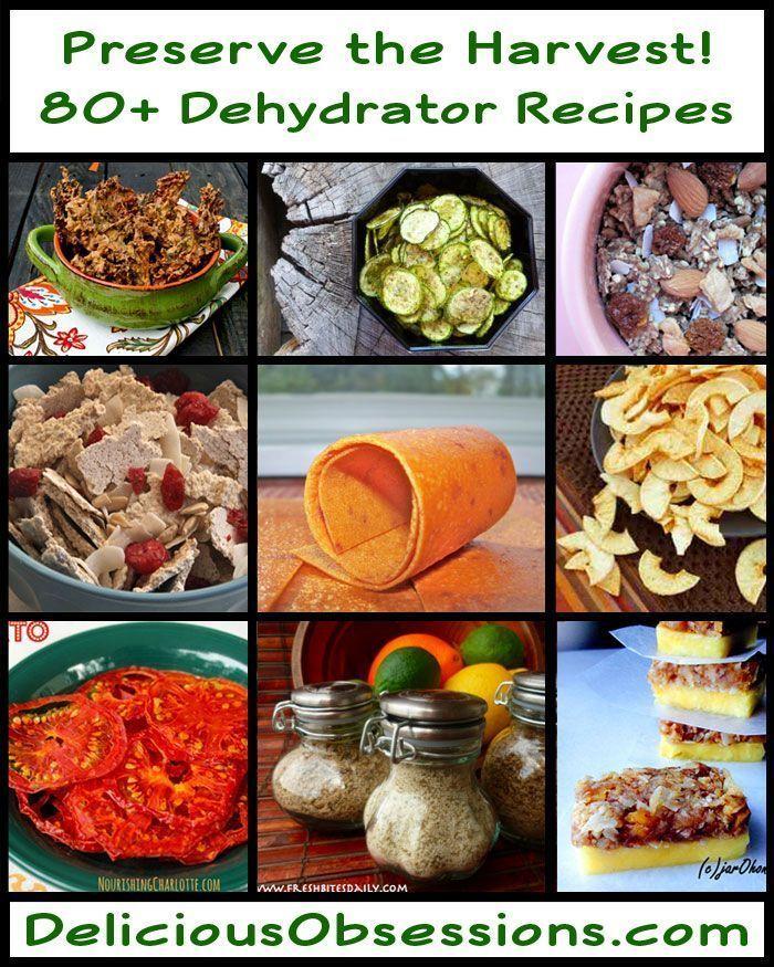 Dehydrator-Recipe-Round-Up