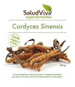 cordyceps-100-gr-salud-viva